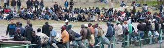 [Question écrite de Bernard Monot] Accueil des migrants au sein de l'UE